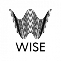 Wise Network Logo